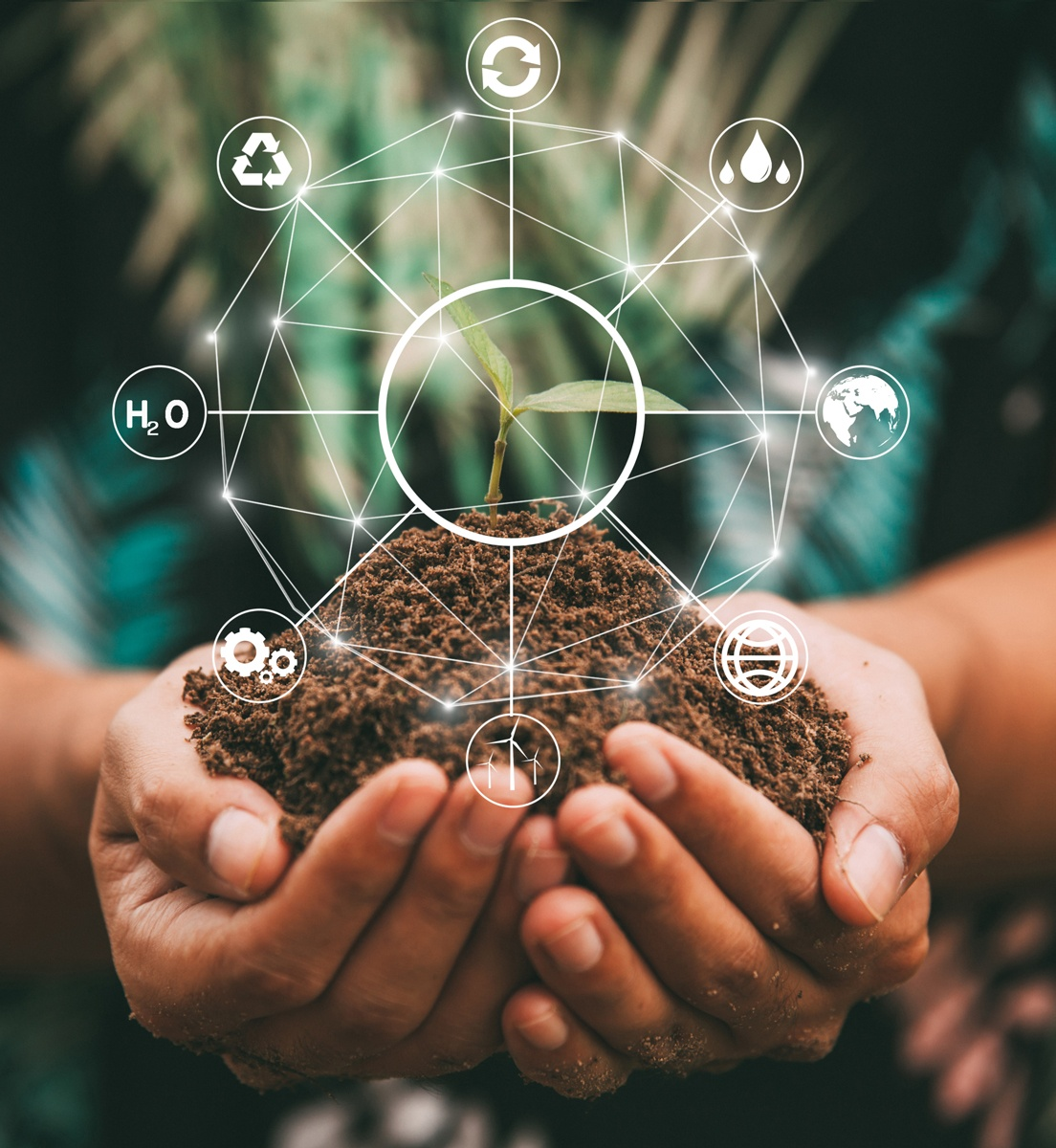 A graphic representation of the environmental cycle with hands holding a seedling in soil.