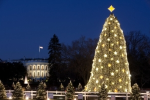The White House serves as a backdrop for the National Christmas Tree on the Ellipse in Washington, D.C., Dec. 16, 2009. (Official White House Photo by Chuck Kennedy) This official White House photograph is being made available only for publication by news organizations and/or for personal use printing by the subject(s) of the photograph. The photograph may not be manipulated in any way and may not be used in commercial or political materials, advertisements, emails, products, promotions that in any way suggests approval or endorsement of the President, the First Family, or the White House.