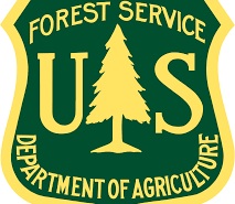 US Forest Service Badge